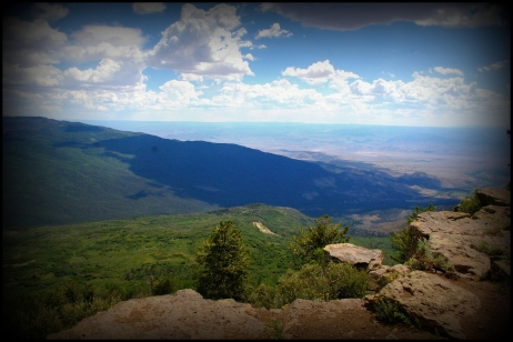 Grand Mesa, Grand Junction, CO, July 2013